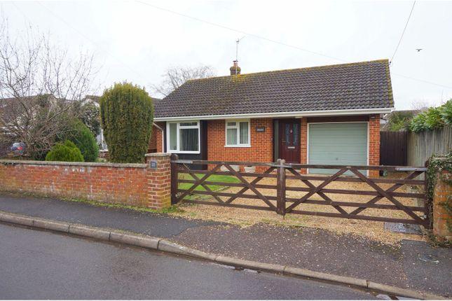 Thumbnail Detached bungalow for sale in Fairlie, Ringwood