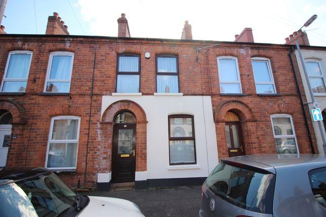 Thumbnail Terraced house for sale in 16 Bendigo Street, Belfast