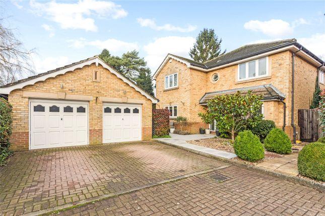 Thumbnail Detached house for sale in Cedar Park, Caterham, Surrey