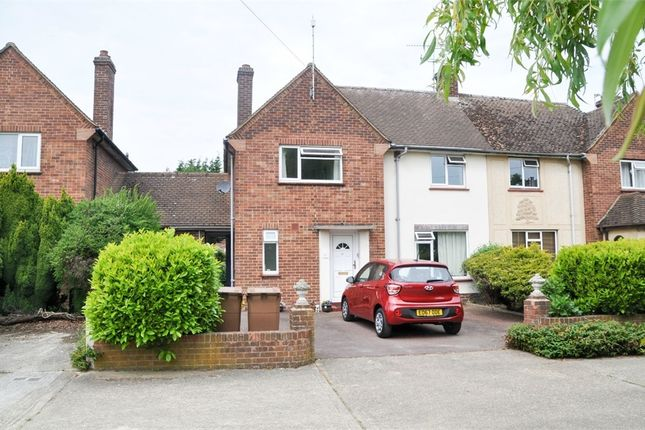Thumbnail Semi-detached house for sale in Beehive Lane, Great Baddow, Chelmsford, Essex