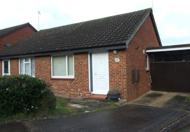 Thumbnail Bungalow to rent in Coleridge Close, Hitchin
