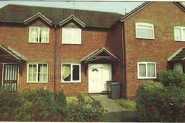 Thumbnail Terraced house to rent in Martin Way, Andover