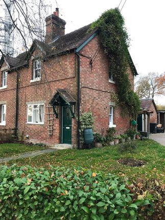 Thumbnail Semi-detached house to rent in Broad Oak, Shrewsbury