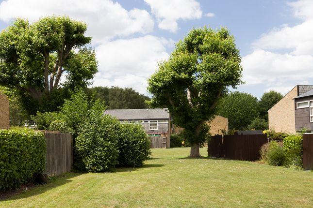 Punch Croft (40) of Punch Croft, New Ash Green, Kent DA3