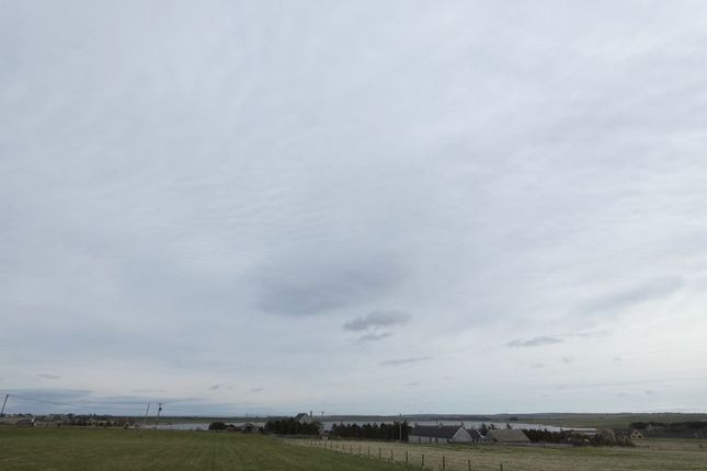 Photo 6 of Plot Of Land, Westside, Dunnet KW14