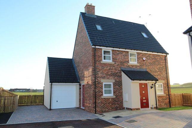 Thumbnail Detached house for sale in Thill Stone Mews, Mill Lane, Whitburn, Sunderland