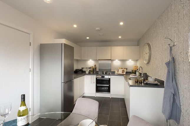 """3 bedroom property for sale in """"Elsenham"""" at Muntjac Road, Langford, Bristol"""