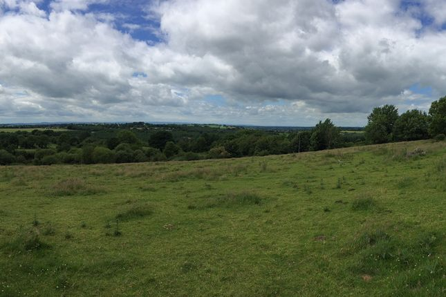 Thumbnail Land for sale in Killabeg, Coolkenno, Tullow, Carlow