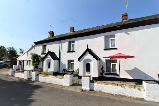 Thumbnail Cottage for sale in West Street, Sheepwash, Beaworthy
