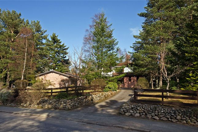 Thumbnail Detached house for sale in Fern Lodge, 51 Barclay Park, Aboyne, Aberdeenshire