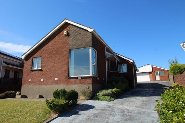 Thumbnail Bungalow for sale in Donegall Avenue, Whitehead