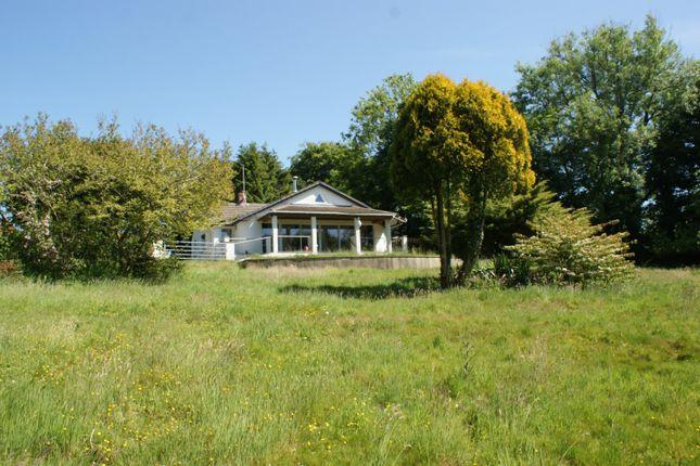 Thumbnail Detached bungalow for sale in Rhydlewis, Llandysul, 4Sl