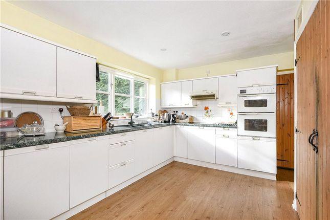 Kitchen of Churchill, Axminster, Devon EX13
