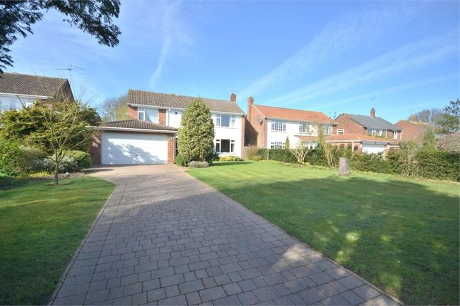 Thumbnail Detached house for sale in Pine Road, South Wootton, King's Lynn