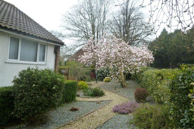 P1010273 of Fairy Road, Wrexham LL13