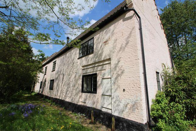 Thumbnail Detached house to rent in Mergate Lane, Bracon Ash, Norwich