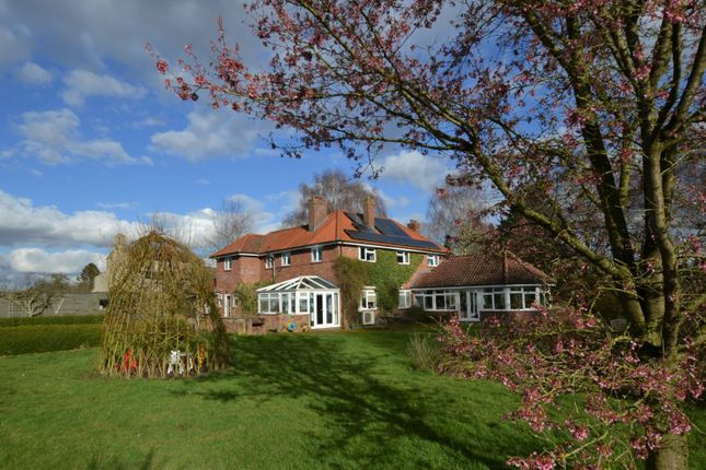 Thumbnail Detached house for sale in School Road, Foulden, Thetford