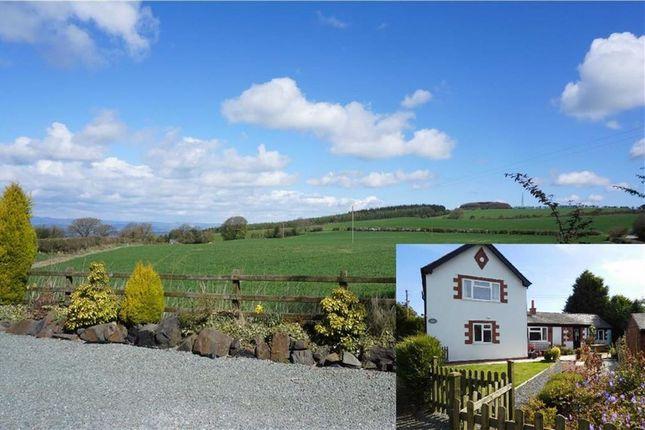 Thumbnail Detached house for sale in Trelystan, Leighton, Welshpool