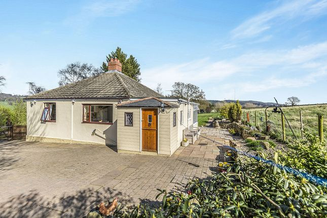 Thumbnail Bungalow for sale in Lizards Cottage, Lanchester, Durham