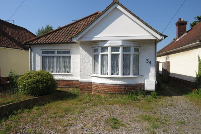 Thumbnail Bungalow to rent in Derwent Road, Ipswich