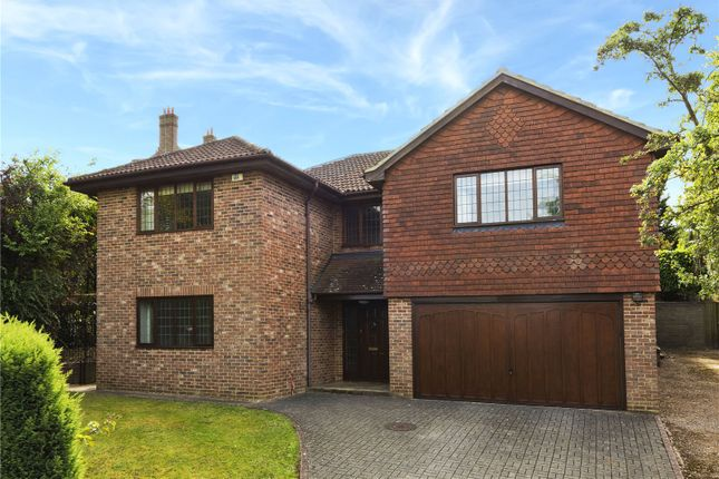 Thumbnail Detached house to rent in Fort Road, Guildford, Surrey