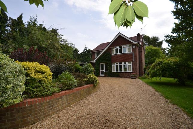 Thumbnail Property for sale in Church Road, Postwick, Norwich