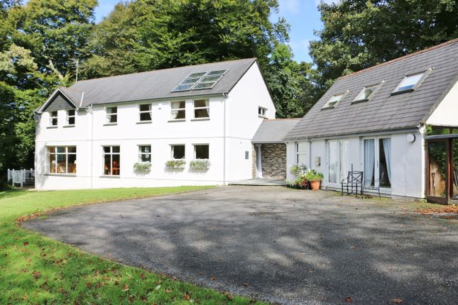Thumbnail Detached house for sale in Warrens Field, Camelford