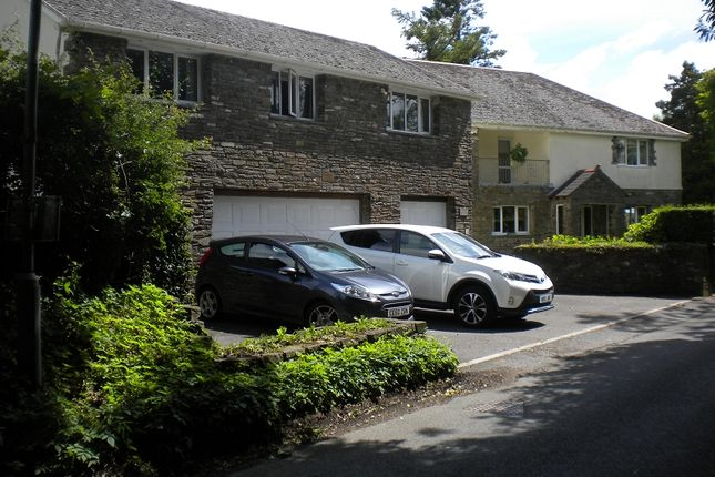 Thumbnail Detached house for sale in Rhydypandy Road, Morriston, Swansea