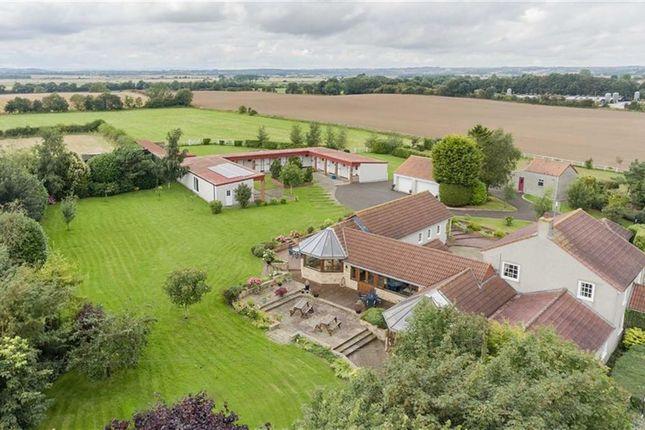 Thumbnail Detached house for sale in Mordon Lodge, Mordon, Stockton On Tees
