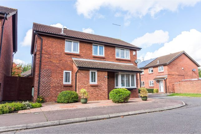 Thumbnail Detached house for sale in Uplands, Werrington, Peterborough