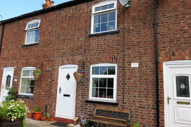 Thumbnail Terraced house to rent in Hollands Place, Macclesfield