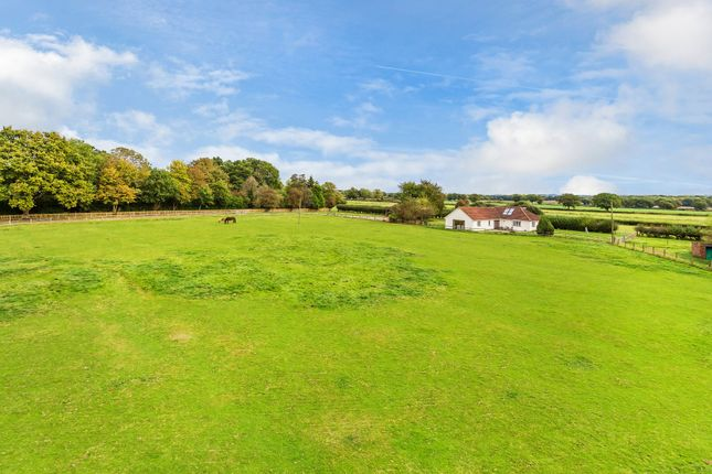 Thumbnail Equestrian property for sale in Haxted Road, Lingfield
