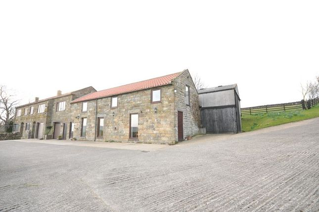 Thumbnail Cottage to rent in Oakley Walls, Lealholm, Whitby