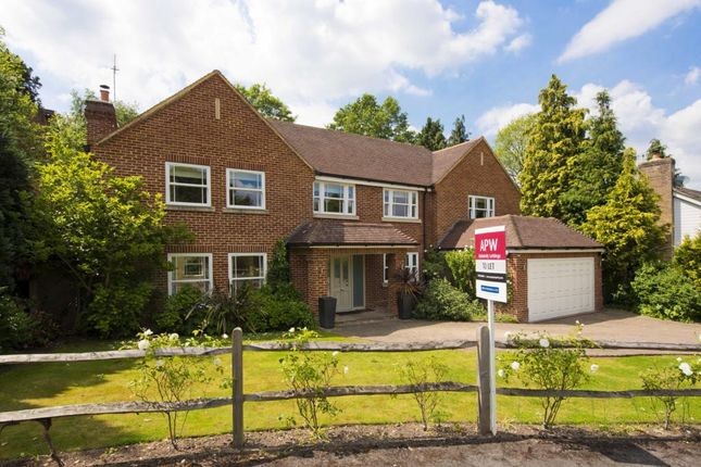Thumbnail Detached house to rent in Hawksview, Cobham