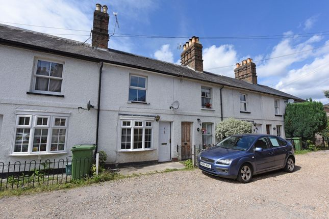 Thumbnail Terraced house to rent in Cedar Lane, Frimley