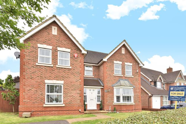 Thumbnail Detached house for sale in Firecrest Road, Gabriel Park, Basingstoke