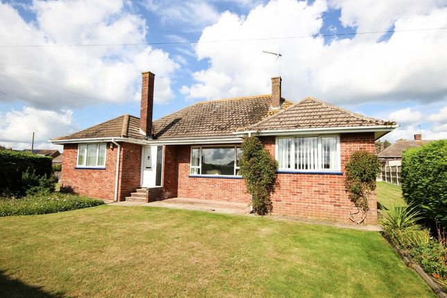 Thumbnail Detached bungalow for sale in Belstead Avenue, Caister-On-Sea, Great Yarmouth