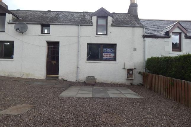 Thumbnail Semi-detached house to rent in The Den, Letham, Forfar