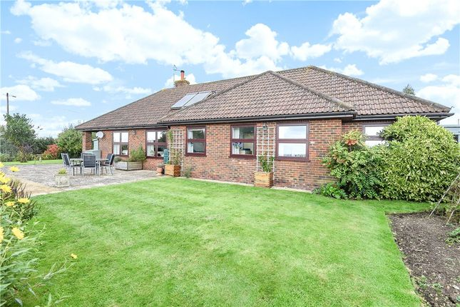 4 bed detached bungalow for sale in College Arms Close, Stour Row, Shaftesbury, Dorset