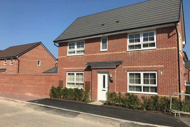 3 bed detached house to rent in Adalia Walk, Gateford, Worksop S81
