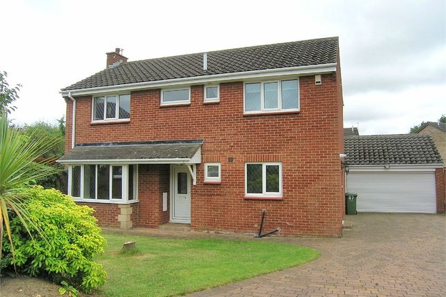 Thumbnail Detached house for sale in Wimpole Road, Stockton-On-Tees, Durham