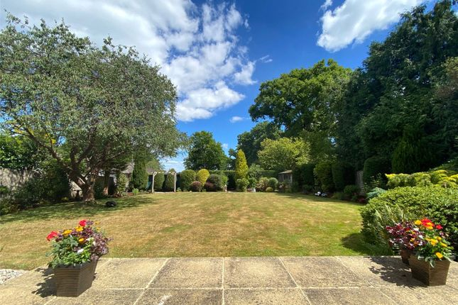 Rear Garden of The Drive, Ifold, Loxwood, West Sussex RH14