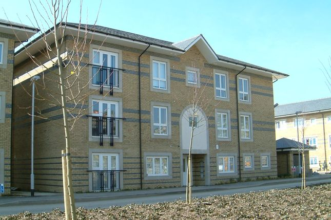 Thumbnail Flat to rent in Longworth Avenue, Cambridge