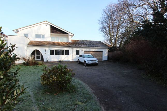 Thumbnail Detached house for sale in Lower Mill Lane, Deal