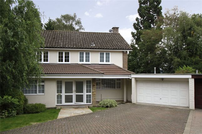 Thumbnail Detached house to rent in Greenwood Park, Kingston Upon Thames