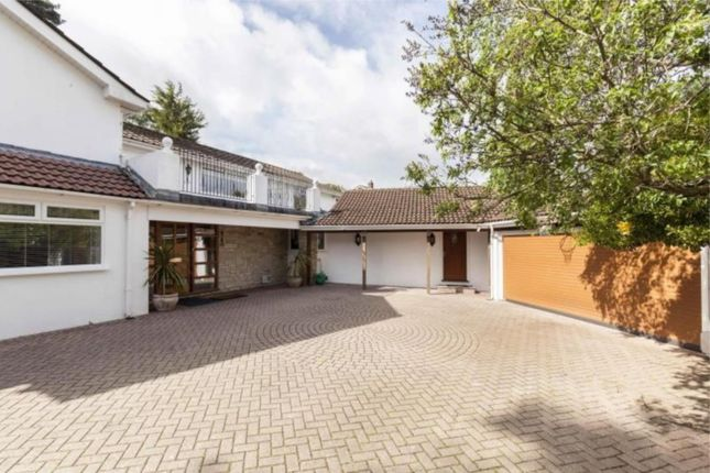 Thumbnail Detached house for sale in Elgin Road, Lower Parkstone, Dorset
