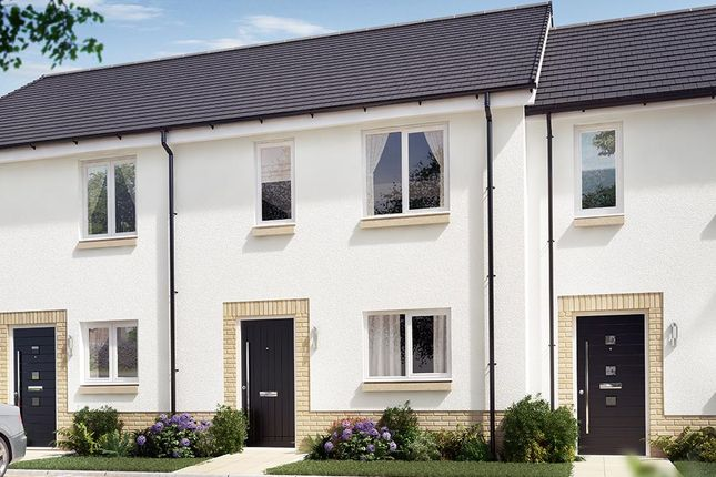 "3 bedroom terraced house for sale in ""The Cambridge Mid"" at Blantyre, Glasgow"