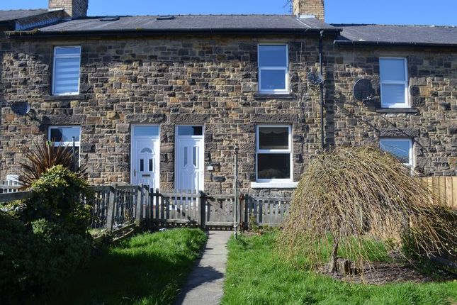 Thumbnail Terraced house for sale in Sea View Terrace, Alnwick