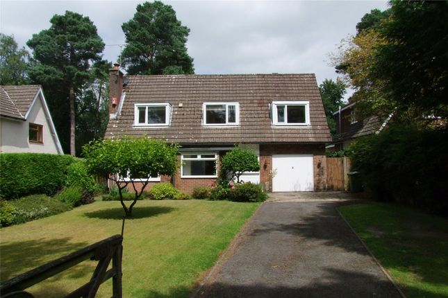 Thumbnail Detached house for sale in Furze Hill Road, Headley Down, Hampshire