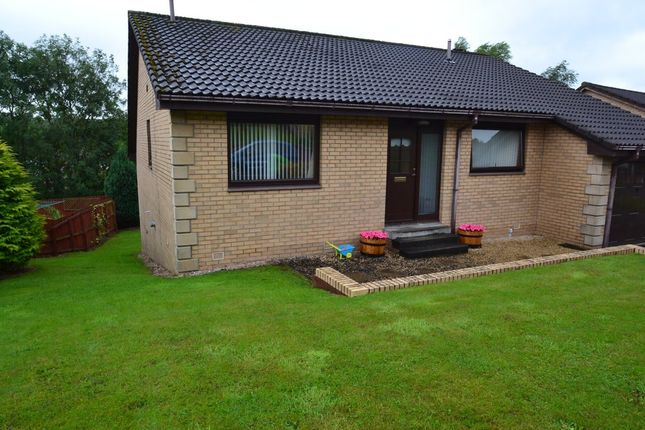 Thumbnail Detached bungalow to rent in Swinburne Drive, Sauchie, Alloa
